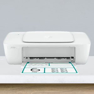HP DeskJet IA 1216 AiO Printer
